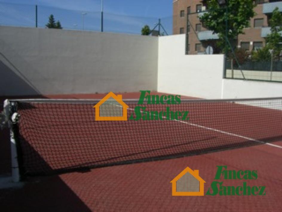 Fincas Sanchez - CHALET-ADOSADO-CASA CON TERRENO-FINCA CUARTE DE ...