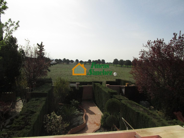 Fincas sanchez chalet adosado casa con terreno finca zorongo ref 6021 - Fincas sanchez ...